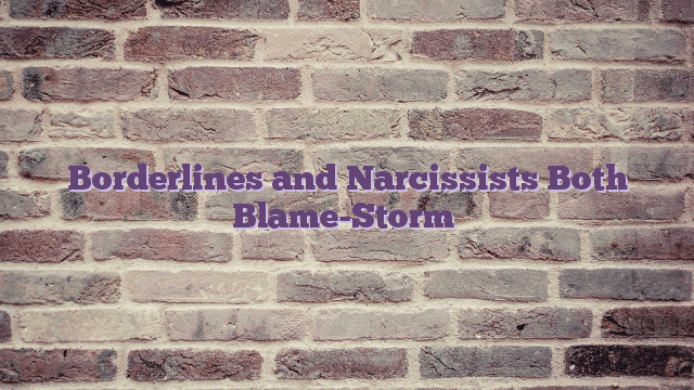 Borderlines and Narcissists Both Blame-Storm
